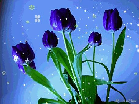 http://99px.ru/sstorage/56/2011/08/mid_23334_7745.jpg
