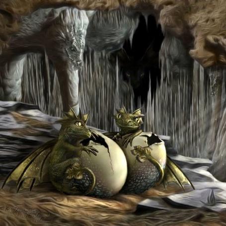 Фото Маленькие дракончики в скалах (© Штушка), добавлено: 04.08.2011 16:36