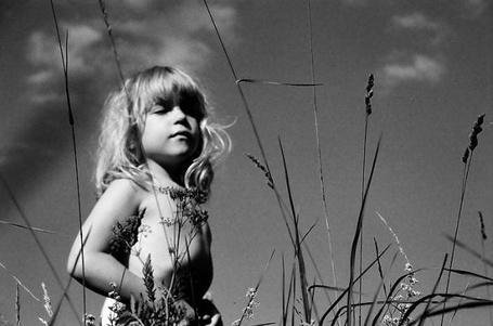 Фото Девочка в поле (© Юки-тян), добавлено: 06.08.2011 11:51
