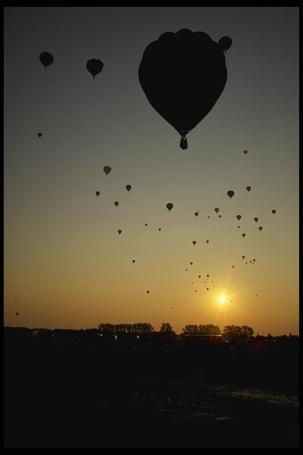 Фото Воздушные шары стремятся в небеса