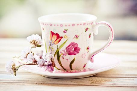 Фото Красивая чашка с цветами (© Штушка), добавлено: 09.08.2011 18:02
