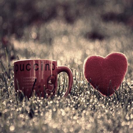 Фото Кружка и сердечко на траве