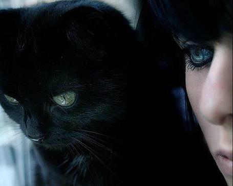 Фото Девушка и кот (© Юки-тян), добавлено: 11.08.2011 22:56