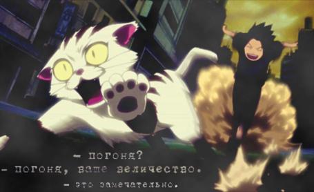 Фото Маленький Саске гонится за кошкой (- погоня? - погоня, ваше величество. - это замечательно.)