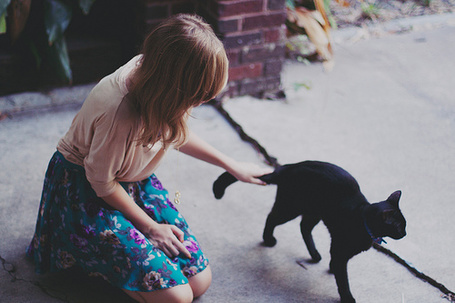 Фото Девушка гладит черного кота, сидя на земле (© Радистка Кэт), добавлено: 17.08.2011 19:11