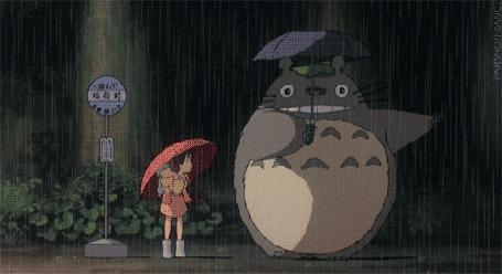 Фото Тоторо прыгает (аниме 'Мой сосед Тоторо')
