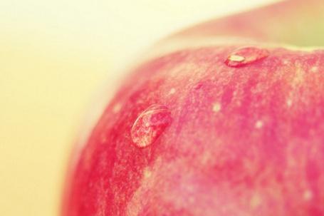 Фото Красное яблоко с каплями воды (© Радистка Кэт), добавлено: 20.08.2011 04:21