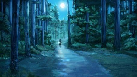 Фото Прогулка по ночному лесу (© Флориссия), добавлено: 24.08.2011 21:36
