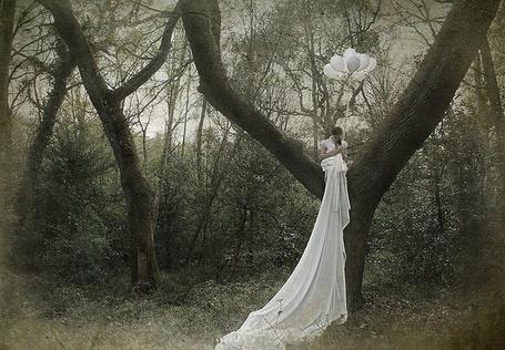 Фото Девушка в белом платье сидя на дереве держит воздушные шары