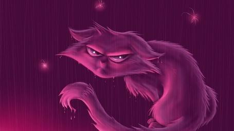 Фото Кот на фиолетовом фоне (© alcatel), добавлено: 26.08.2011 22:20