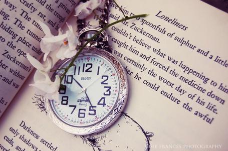 Фото Антикварные серебряные часы на цепочке и белые цветы лежат на страницах открытой книги (© D.Phantom), добавлено: 27.08.2011 03:32
