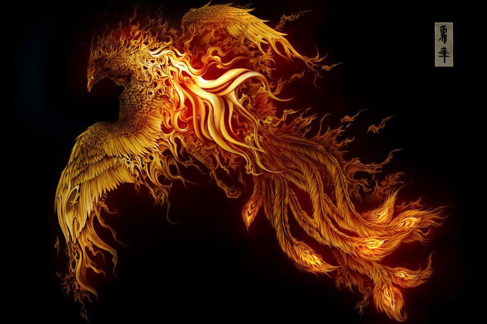Тэги огонь птицы рисунки фэнтези