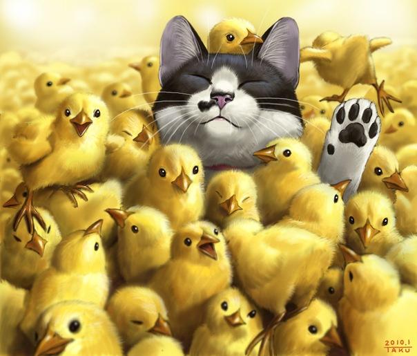 Цыпленок и котенок в рисунках