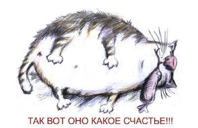 Фото Толстый кот с сосиской в зубах: photo.99px.ru/photos/27020