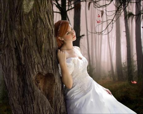 Фото Девушка плачет, облокотившись на дерево (© Volkodavsha), добавлено: 03.09.2011 19:46
