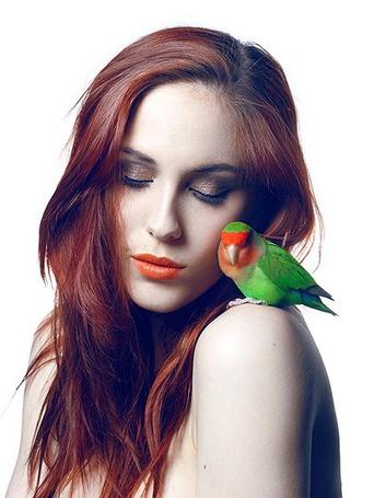Фото Девушка с попугайчиком