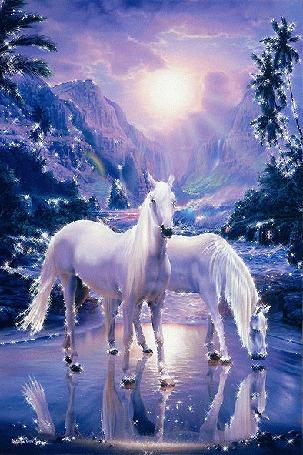 Фото Белые кони в лесу