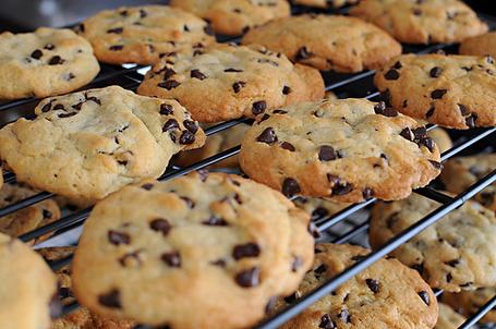 Фото Печенье с шоколадными каплями (© Радистка Кэт), добавлено: 16.09.2011 22:07
