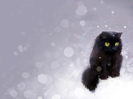 Фото Пушистый черный кот сидит на снегу