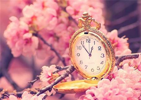 Фото Красивые часы  и цветущая вишня (© TARAKLIA), добавлено: 20.09.2011 19:51
