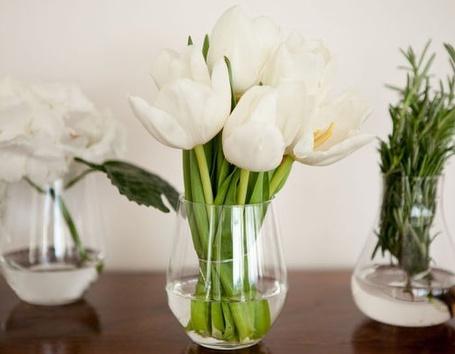 Фото Белые тюльпаны стоят в вазе