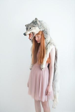 Фото Девушка в шкуре волка (© Штушка), добавлено: 24.09.2011 13:12