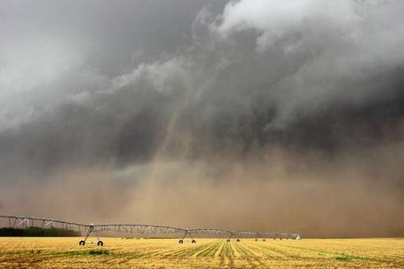 Фото Буря над полем