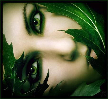 Фото Зеленоглазая девушка в листьях (© alcatel), добавлено: 29.09.2011 16:05