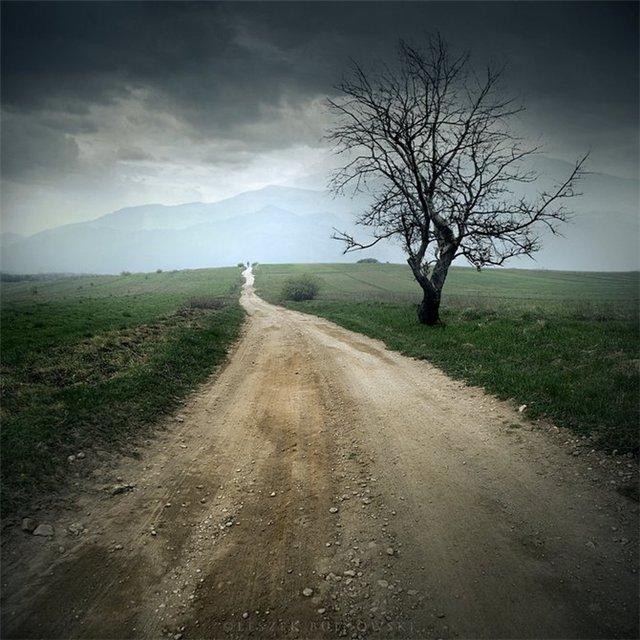 Картинки одинокая дорога