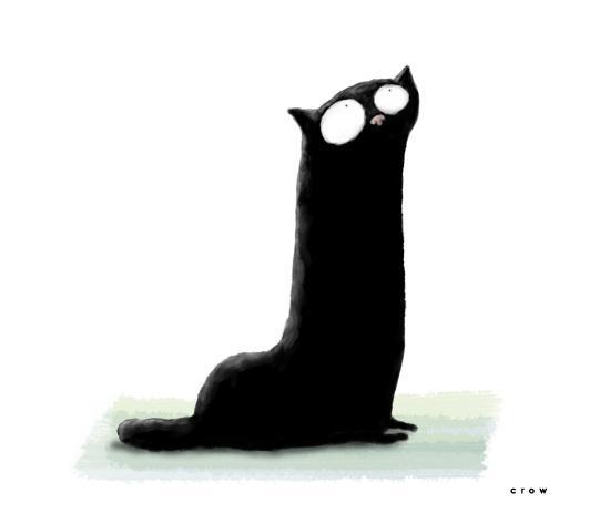 Фото Черный длинный кот