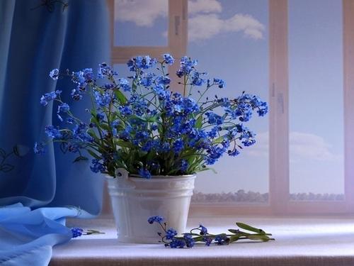 http://99px.ru/sstorage/56/2011/10/image_562810112121136466556.jpg