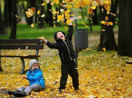 Фото Дети играют с листьями