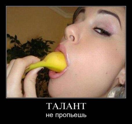 Фото Талант не пропьёшь (© Штушка), добавлено: 03.10.2011 00:48