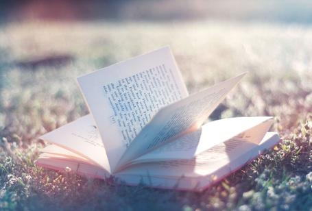 Фото Книга на траве (© StepUp), добавлено: 03.10.2011 21:47