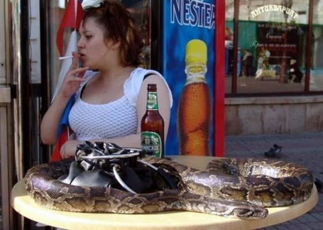 Фото Пиво с закуской (© Anatol), добавлено: 08.10.2011 22:16