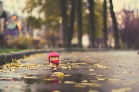Фото Картонный человечек Danbo гуляет по осеннему парку (© D.Phantom), добавлено: 17.10.2011 06:13