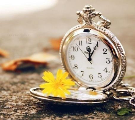 Фото Карманные часы и цветочек (© Шепот_дождя), добавлено: 23.10.2011 02:01