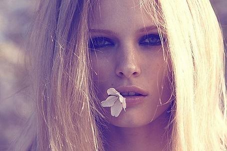 Фото Литовская модель Эдита Вилкевичуте / Edita Vilkeviciute с цветком во рту (© Шепот_дождя), добавлено: 23.10.2011 02:33