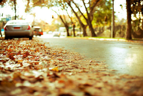 Фото Машина у обочины дороги, усыпанной осенней листвой (© StepUp), добавлено: 24.10.2011 16:12