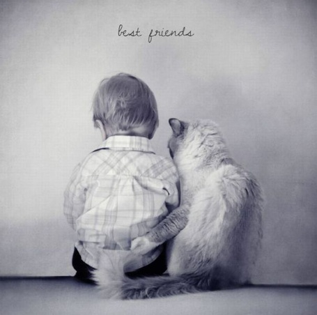Фото Малыш и кот (best friends)