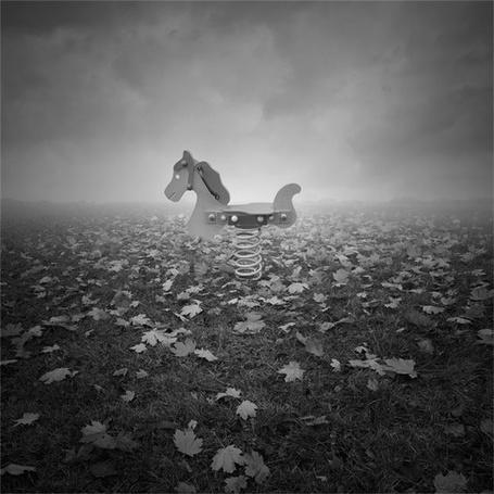 Фото Игрушечная лошадка на поле, усыпанном осенней листвой (© Anatol), добавлено: 26.10.2011 15:50