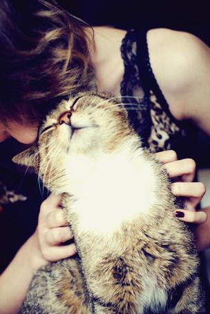 Фото Девушка гладит кота (© Lola_Weazlik), добавлено: 28.10.2011 20:42