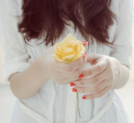 Фото Девушка с желтой розой в руках (© Lola_Weazlik), добавлено: 30.10.2011 23:43