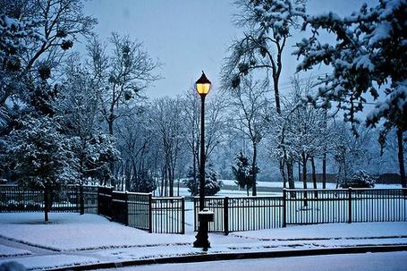 Фото Утро в парке (© Штушка), добавлено: 31.10.2011 11:07