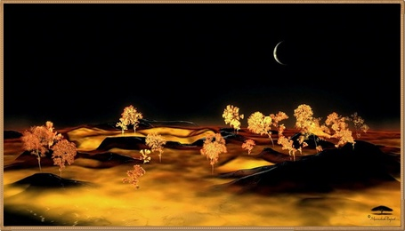 Фото Чёрная ночь на осенней поляне (© Флориссия), добавлено: 31.10.2011 19:07