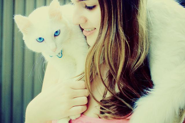 Фото на аву девушка с котом