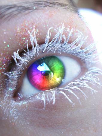 Фото Глаз с разноцветным зрачком и белыми ресницами