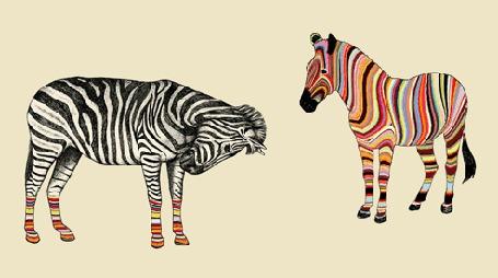 Фото Позитивные зебры переливаются всеми цветами радуги (© Anatol), добавлено: 04.11.2011 17:18
