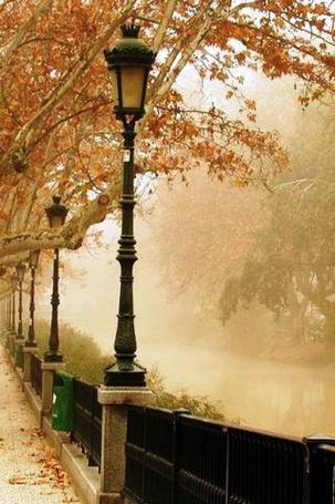 Фото Туманное осеннее утро (© Morena), добавлено: 06.11.2011 18:44