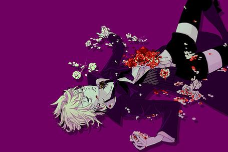 Фото Алоис лежит в окровавленных розах с пауком на шее (аниме Тёмный Дворецкий)